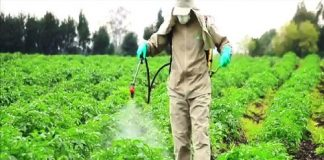 Surfactants used in Agrochemical Market