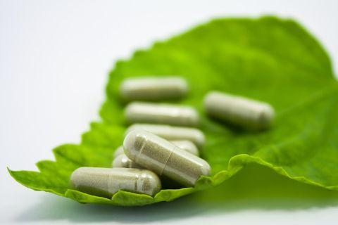 OTC Herbal and Traditional Medicines Market Report
