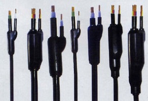 Branch Cable